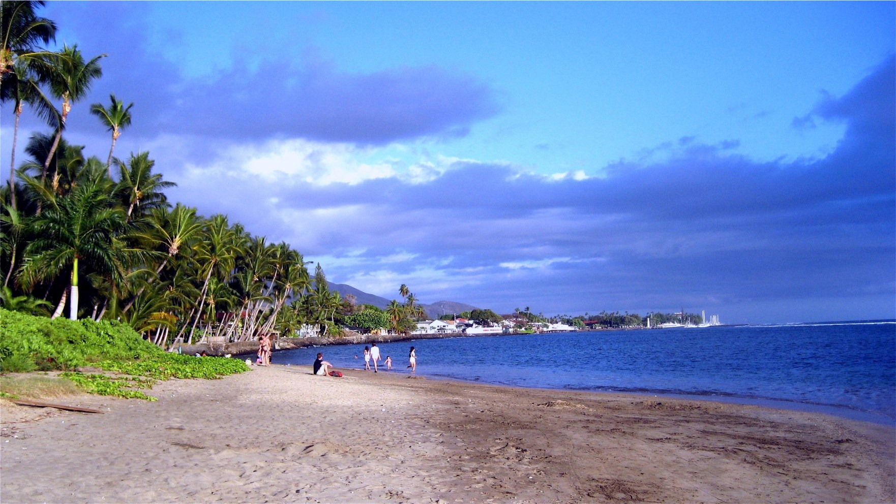 Car Rental Companies In Lahaina Maui